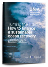 TURNING THE TIDE: HOW TO FINANCE A SUSTAINABLE OCEAN RECOVERY - Κεντρική Εικόνα