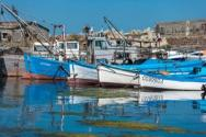 Mediterranean and Black Seas: Commission proposes fishing opportunities for 2020 - Κεντρική Εικόνα