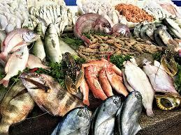 Webinar on Market Diversification - Seafood - Κεντρική Εικόνα