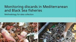 Monitoring discards in Mediterranean and Black Sea fisheries: methodology for data collection - Κεντρική Εικόνα